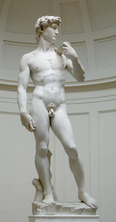 Il David è una celeberrima scultura, fatta in marmo (h 410 cm, 517 con la base) da Michelangelo, databile tra il 1501 e l'inizio del 1504 Largamente considerato un capolavoro della scultura mondiale, è uno degli emblemi del Rinascimento, nonché simbolo di Firenze e dell'Italia in generale all'estero.