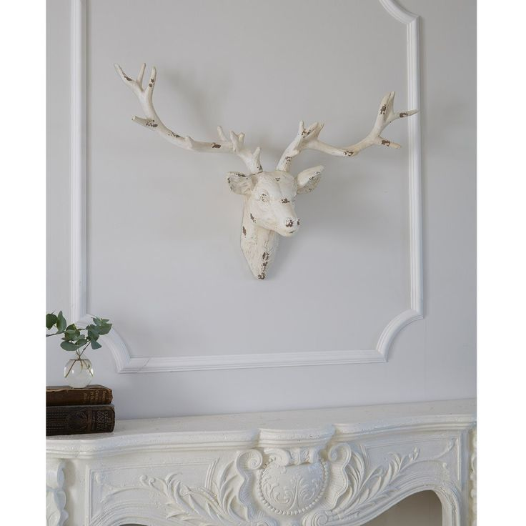 25+ Best Ideas About Stag Head On Pinterest