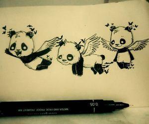 Anjinhos Pandas