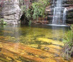SA Hiking Trails - Tsitsikama Mountain Trail, Western Cape, South Africa
