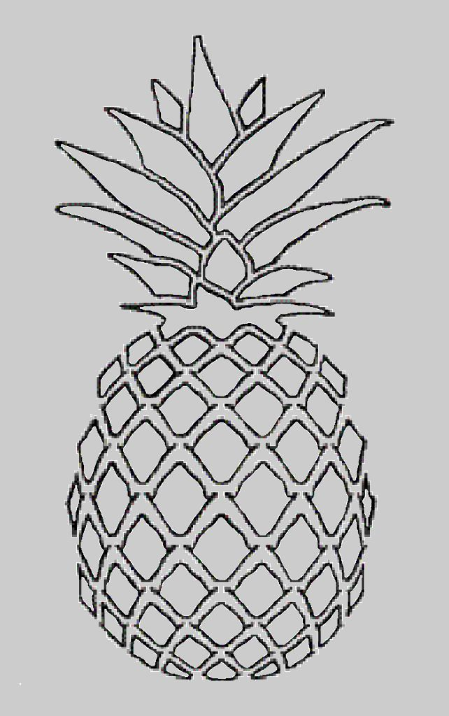 pineapple line drawing - Google Search