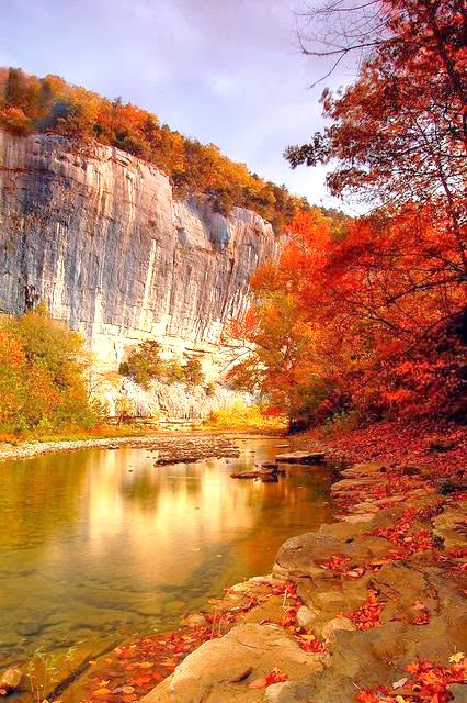 Roark's Bluff Ponca Arkansas. From Nicole Baby Lim. #travel #vacation #avacationrental4me