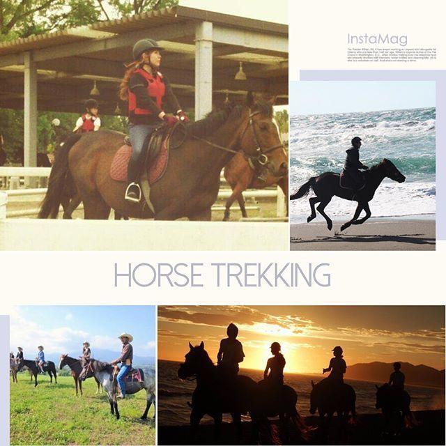 【miyuki_bnf】さんのInstagramをピンしています。 《久々に馬に乗りたい😝 ギブソン元気かな? 乗馬体験、行きたい人いませんかー?🙋✨ #乗馬#外乗#海#山#川#森#日本中で#モンゴルで#やりたい#夢の一つ 🐴💓#horse#horseriding#horsetrekking#乗馬好き#乗馬女子#馬好きさんと繋がりたい》
