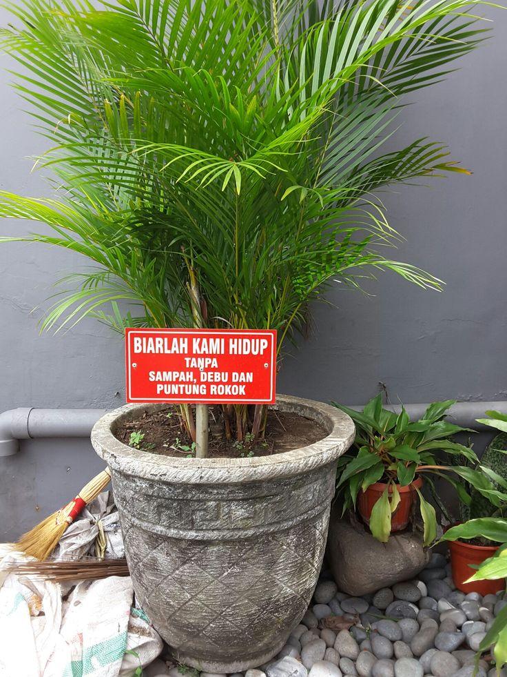 Kalau tanaman bisa ngomong.