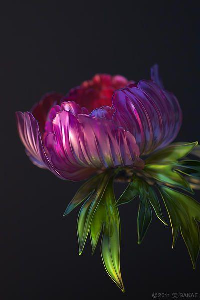 春牡丹かんざし 黒背景の画像:榮 - sakae - 簪作家