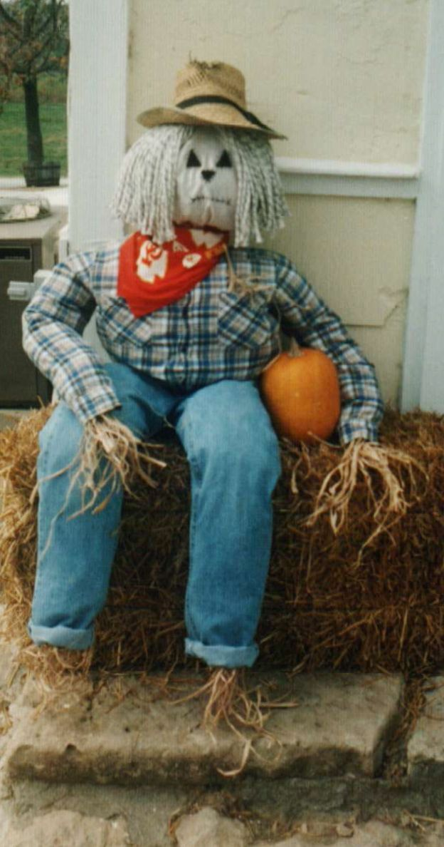 scarecrow  stuffed with newspaper raffia hands and feet mop for hair pillow case stuffed