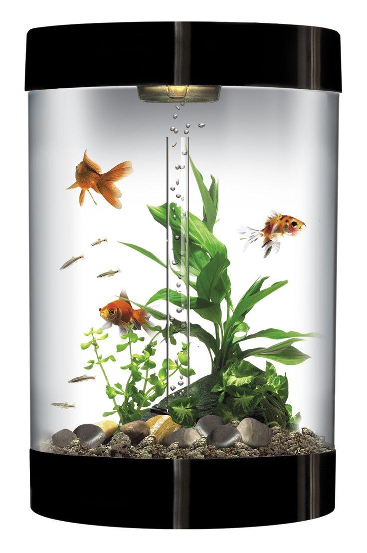 Fish for aquarium buy - Official Biube Patented Fish Tank European Self Filtering Globe Aquarium Save With Rewards Card