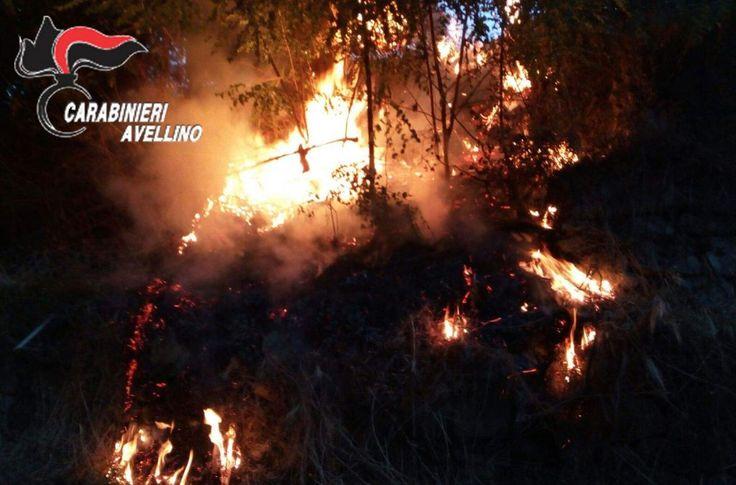 Atripalda, Trentenne sorpreso ad appiccare un incendio