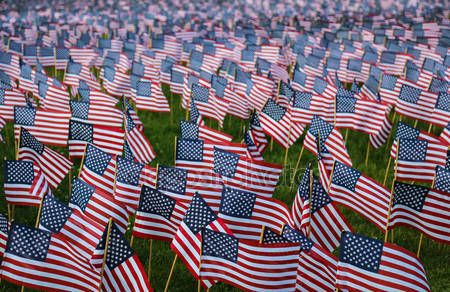 stockphoto8.com Royalty-free stock photos, images, illustrations, vectors - Many Small American Flags stock images and illustrations