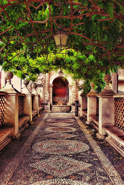 A Path at the Villa d'Este in Tivoli, Italy.   With its palace and garden, Villa d'Este is one of the most remarkable and comprehensive illustrations of Renaissance culture at its most refined.