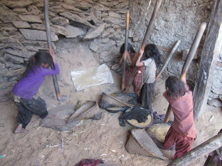 Children use traditional pestles and mortars to crush rice grains during school holiday, at Charap village of Rowa VDC in Mugu district, on October 24,