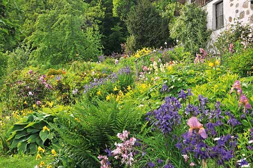GEO stellt den Naturgarten-Pionier Werner Gamerith mit einem Beitrag vor. Herrliche Bilder, traumhaft schöne Inspirationen für den eigenen Naturgarten.