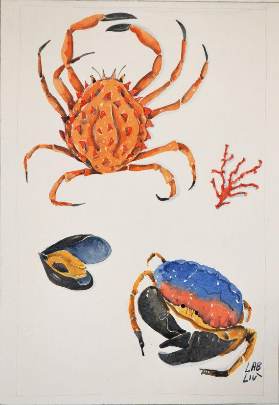 #Illustrazione ad #acquarello tema #mare di LabLiu su Etsy #corallo #cozza #oceano #granchio #estate #watercolor #illustrations #ocean #coral #crab #mussel #home