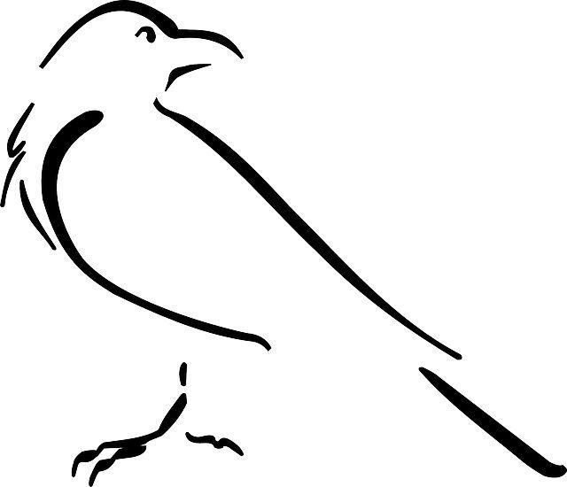 Crow, Line, Art - Free image - 45972