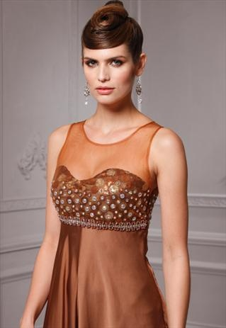 Evening Dresses Brown And Women 39 S Dresses On Pinterest