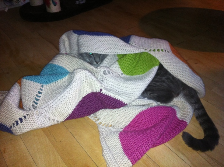 Another blanket, that my cat just LOVES! :)