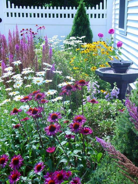 Purple coneflower, daisies, foxglove, black-eyed susans, astilbe and hollyhocks fill this garden.