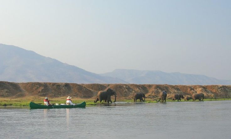 Canoeing with elephants !  Out of this world experience...