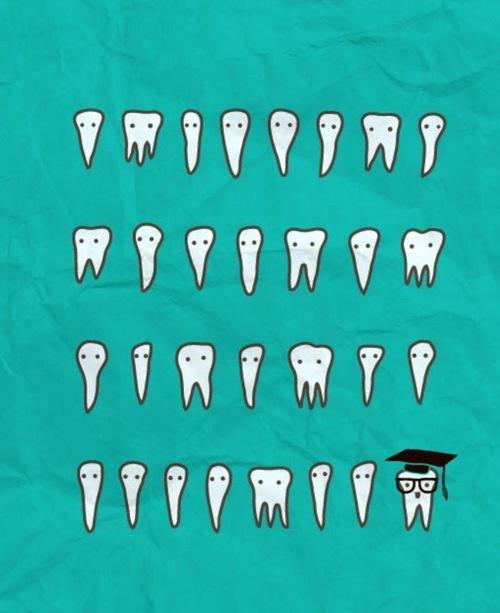 Wisdom Tooth - the t-shirt.  #dentalhumor Wild Smiles Pediatric Dentistry   #Jackson   #TN   www.wildsmiles.us