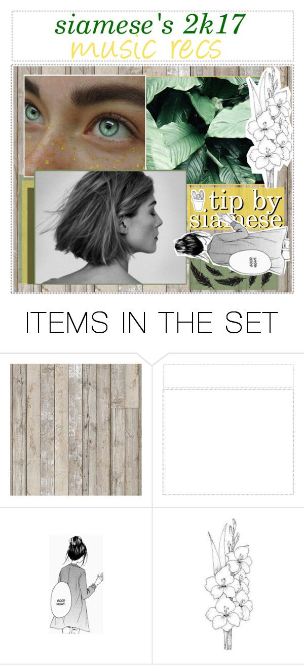 """""""siamese's 2k17 music recommendations / siamese"""" by perfectly-tips ❤ liked on Polyvore featuring art and perfectlysiamesexo"""