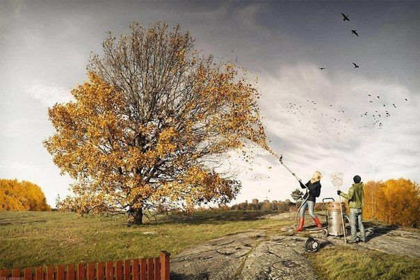 осенняя уборка листвы