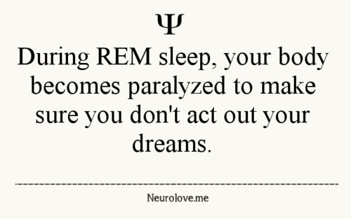 Psychology Facts... Narcolepsy is saving me! I stay in REM for a reason
