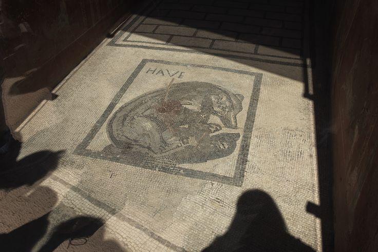 Il mosaico che si trova all'ingresso della casa dell'Orso Ferito. © Anna Monaco (@annafdf) - Campaniasuweb