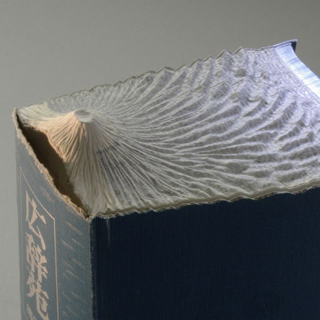 http://www.thisiscolossal.com/2012/06/new-carved-book-landscapes-by-guy-laramee/