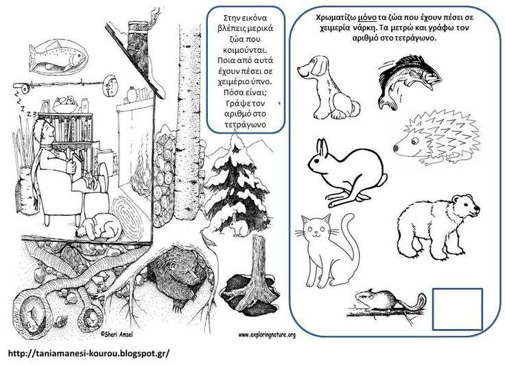 Δραστηριότητες, παιδαγωγικό και εποπτικό υλικό για το Νηπιαγωγείο: Ζώα σε Χειμερία Νάρκη: Εξάσκηση Παρατηρητικότητας και Αρίθμηση