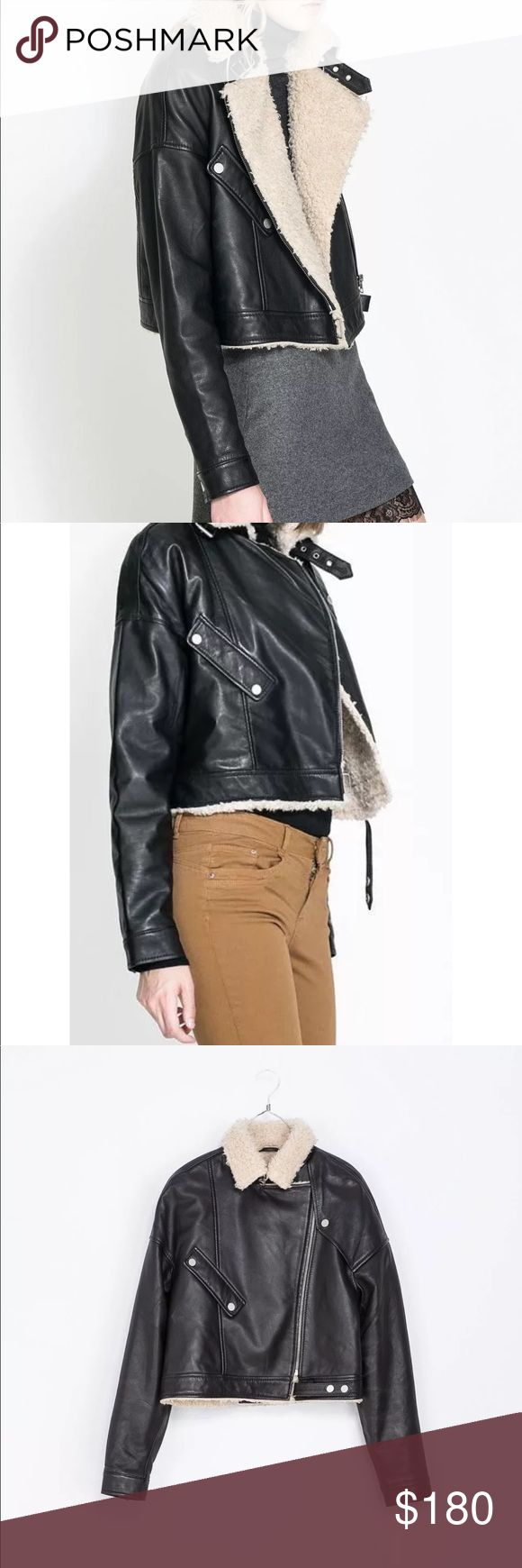 Brand new Zara Trafulic sheepskin real leather Brand new never worn no tags. Super soft real leather, lined with real sheepskin fur. Biker style jacket. Zara Jackets & Coats