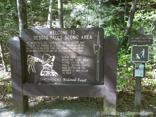 Desoto Falls Information Sign, Chattahoochee National Forest, Cleveland, Georgia — The story seems far fetched, but Hernando de Soto's expedition is believed to have traveled close to these Georgia mountains. Stranger things have happened!