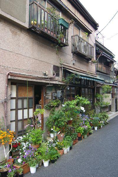 Nezu, Taito city, Tokyo