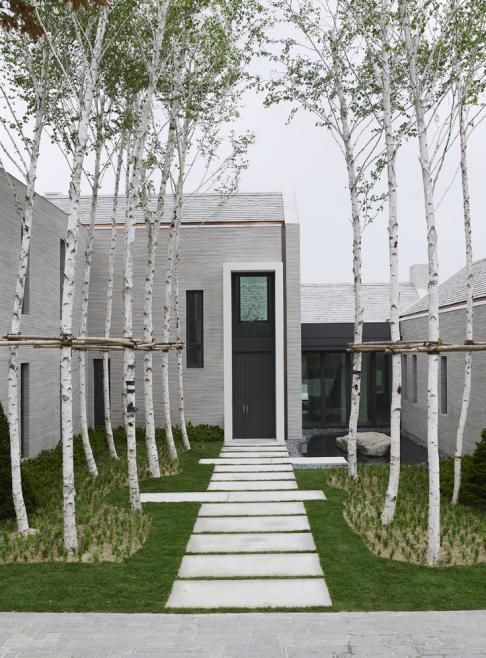 The simple plant palette creates clean lines that define the entrance to the home. PAM - pad met groenvoegen tussen berken - wonju residential resort, korea