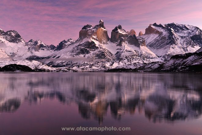 The Cuernos of Torres del Paine in morning light - Image D7E2861.jpg | ATACAMAPHOTO Nature and Wildlife Stock Photo Search