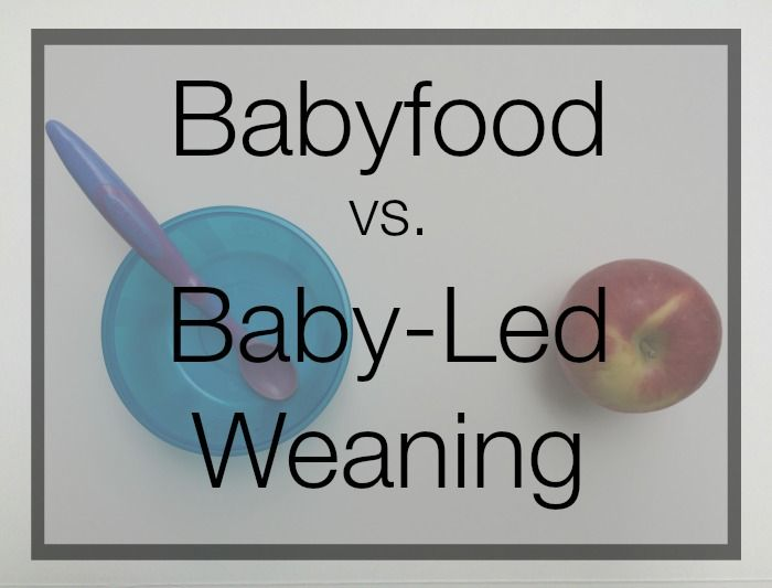 Baby-Led Weaning vs Babyfooding: Teddy and Piper