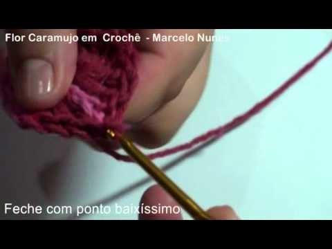 Flor_Caramujo_em_croche_marcelo_nunes.mp4                                                                                                                                                      Mais