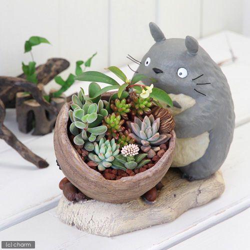 totoro con vasija y plantas