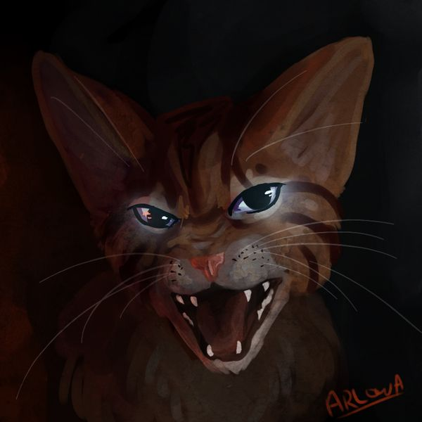 Warriors Forest Of Secrets Lexile: 17 Best Images About Warrior Cats On Pinterest