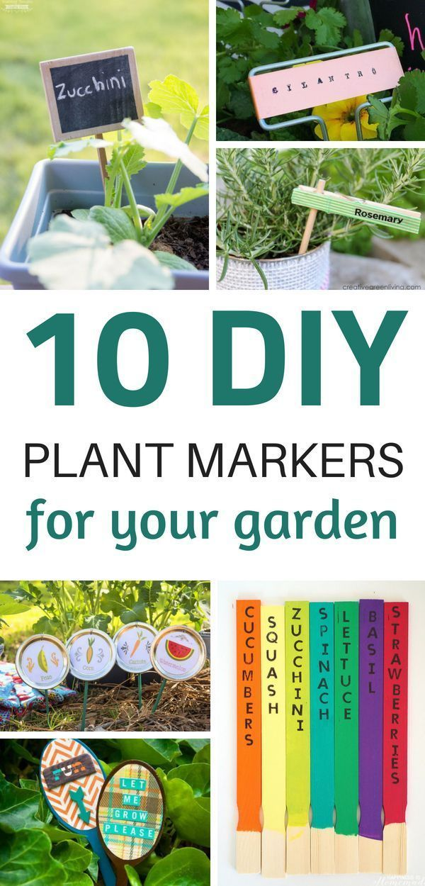 Diy Plant Marker Ideas For Your Garden With Images Plant