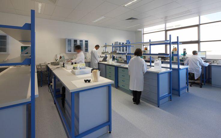 Blue White lab