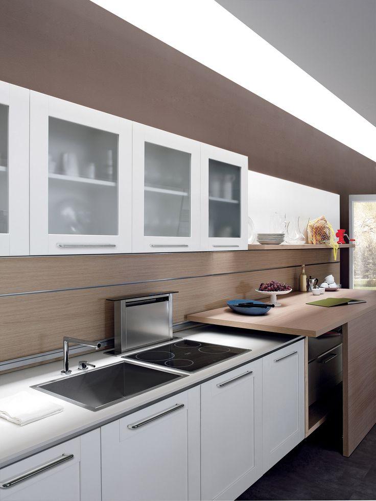 Contemporary Kitchen Cabinet Doors 33 best contemporary kitchen cabinets & projects images on