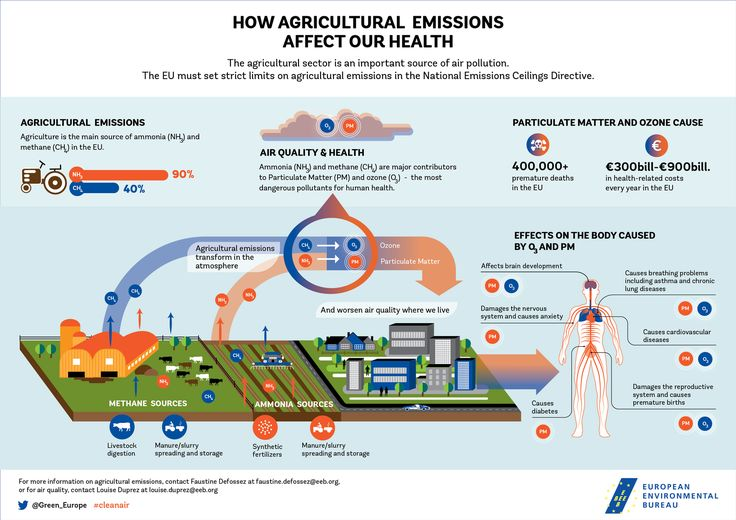 Infographic: How agricultural emissions affect our health - EEB