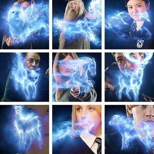 (harry potter,patronus,luna lovegood,ron weasly,cho chang,mcgonnagal,albus dumbledore,hermione granger,minerva mcgonnagal)