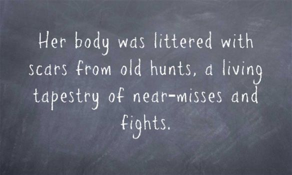 Her body was littered with scars from old hunts, a living tapestry of near-misses and fights.