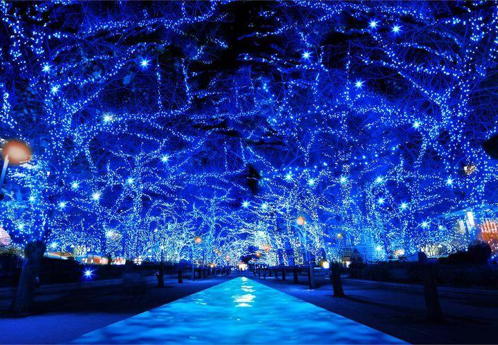 2014年に東京・中目黒で人気を博したイルミネーション「青の洞窟」が2年ぶりに東京・渋谷へ場所を変えて復活することが決定しました!場所は渋谷公園通りから代々木公園ケヤキ並木の約750m、期間は2016年11月22日(火)から2017年1月9日(月・祝)の開催です。