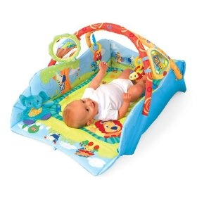19 Best Baby Seat With Tray Images On Pinterest Booster