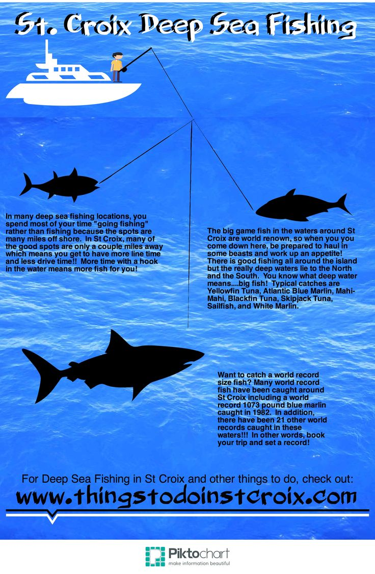 Go deep sea fishing for a world record in st croix www thingstodoinstcroix