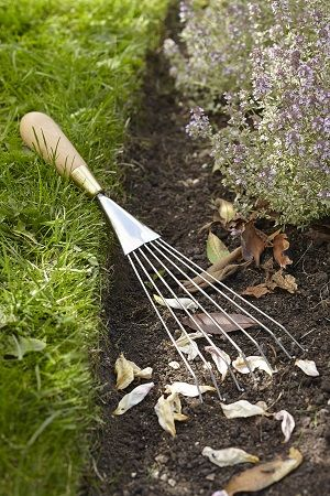 Designed by Sophie Conran, this Rake is intended to be both beautiful and functional! - See more at: http://www.theoldpavilion.co.uk/for-garden/greenhouse/s-c-rake-gift-boxed.html#sthash.PSDft4S8.dpuf