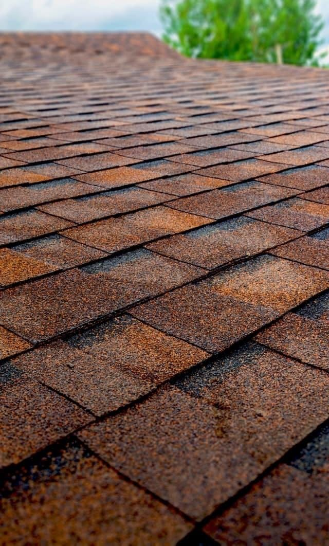 Seven Unique Roof Styles You May Not Know About Modernize Architectural Shingles Roof Roof Styles Types Of Roofing Materials