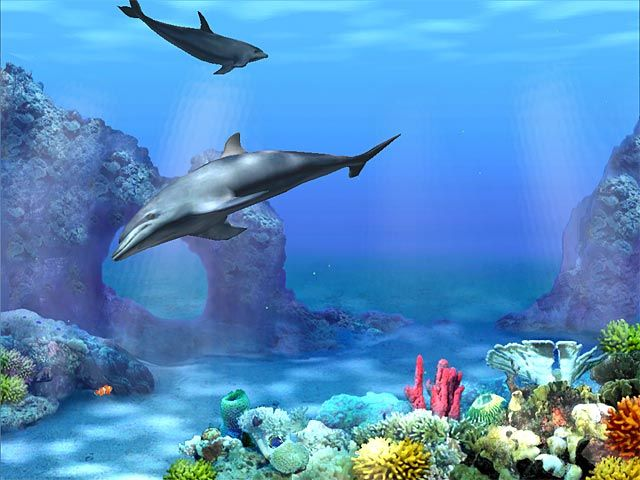 Free 3d animated wallpaper swim to the ocean depths with for Moving fish screensaver